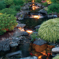 Garden Pond Water Feature