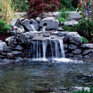Pond Garden Water Feature
