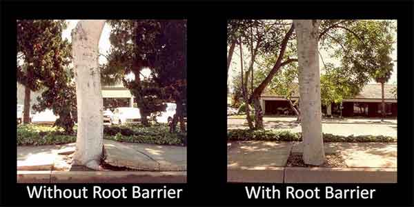 Root Barrier From Deeproot